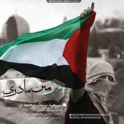 عکس کاور آهنگ جدید سعید بیک محمدی  به نام سرزمین مادری عکس جدید سعید بیک محمدی