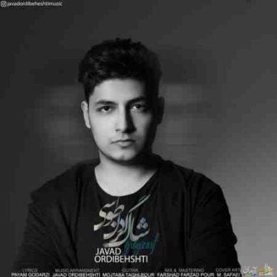 عکس کاور آهنگ جدید جواد اردیبهشتی به نام  شال گردن طوسی عکس جدید جواد اردیبهشتی