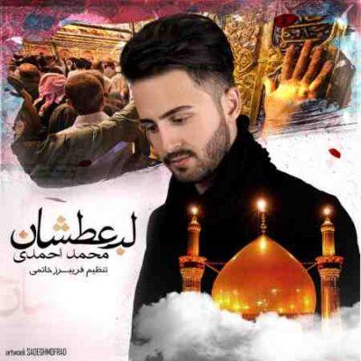 عکس کاور آهنگ جدید  محمد احمدی به نام  لب عطشان عکس جدید  محمد احمدی