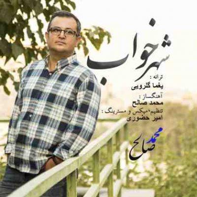 عکس کاور آهنگ جدید  محمد صالح به نام شهر خواب عکس جدید  محمد صالح
