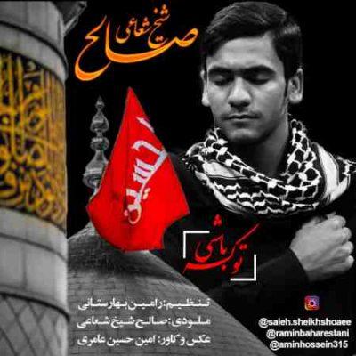 عکس کاور آهنگ جدید  صالح شیخ شعاعی به نام  تو که باشی عکس جدید  صالح شیخ شعاعی