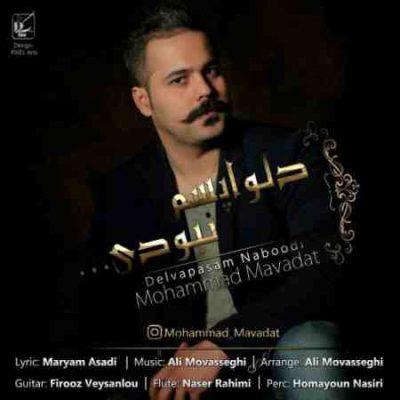 عکس کاور آهنگ جدید محمد مودت به نام دلواپسم نبودی عکس جدید محمد مودت