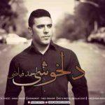 دانلود آهنگ جدید احمد فیاضی دلخوشی
