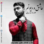 دانلود آهنگ جدید محمد نیسانی عاشق و دیونم