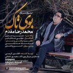 دانلود آهنگ جدید محمدرضا مقدم بوی تاک(تیتراژ سریال بوی تاک)