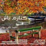 دانلود آهنگ جدید امید تقی پور کنارم باش