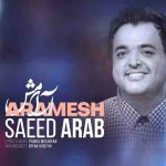 دانلود آهنگ جدید سعید عرب آرامش