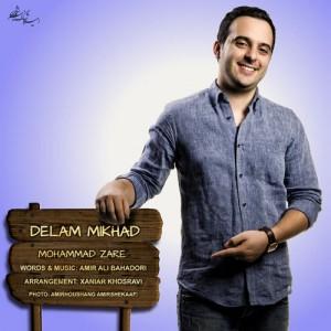 دانلود آهنگ جدید محمد زارع به نام دلم میخواد