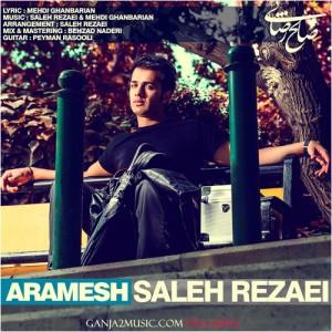 دانلود آهنگ جدید صالح رضایی آرامش