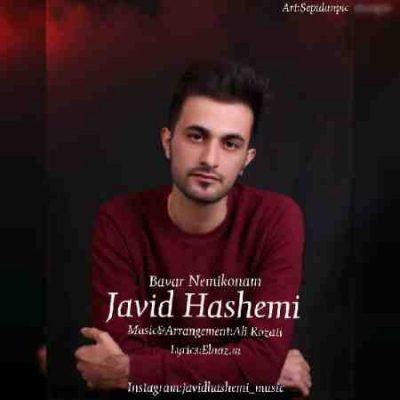 عکس کاور آهنگ جدید  جاوید هاشمی به نام باور نمیکنم عکس جدید  جاوید هاشمی