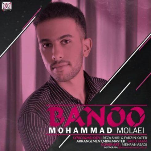 دانلود آهنگ جدید محمد ملائی به نام بانو / کیفیت اورجینال 320