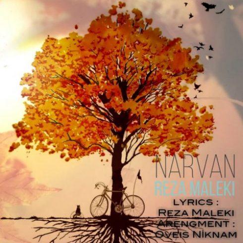 دانلود آهنگ جدید رضا ملکی به نام نارون / کیفیت اورجینال 320