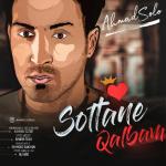 دانلود آهنگ جدید احمد سلو به نام سلطان قلبم / کیفیت اورجینال 320