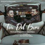 دانلود آهنگ جدید محمدرضا عشریه به نام تو دل برو / کیفیت اورجینال 320